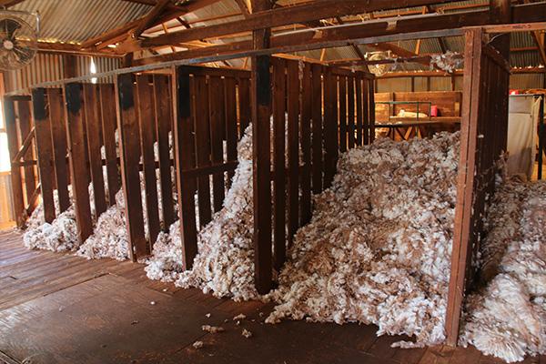Explore the Mt Eba working shearing sheds