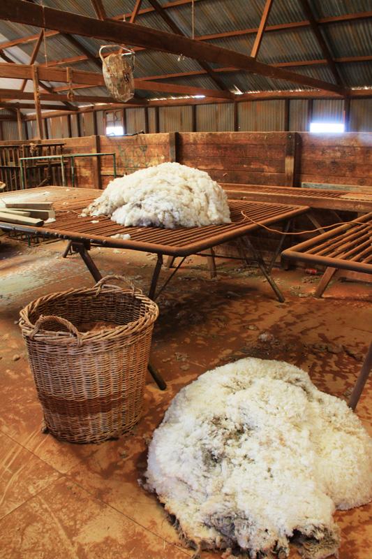 Mt Eba Station Wool
